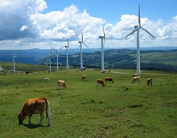 Windpark in Galicien
